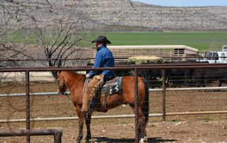 DSC_8694 mckenzie cowboy e